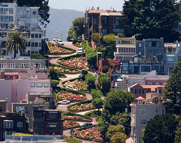 San Francisco Winding Street