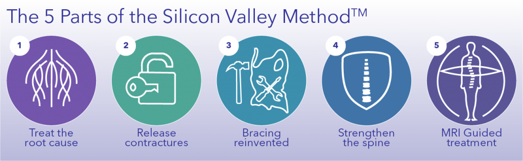 Overview icons of the 5 parts of the Silicon Valley Method