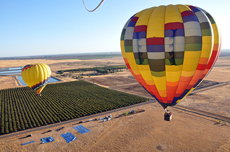 Napa Hot Air Balloon