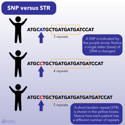 Example of a SNP versus a STR which can be hereditary