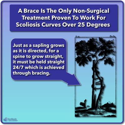 Growing sapling analogy for scoliosis treatment